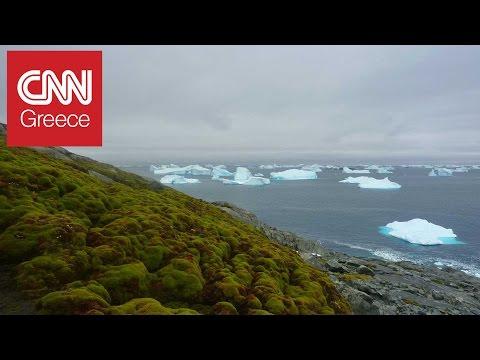 Video - Έβερεστ: Οι πάγοι υποχωρούν, οι σοροί των αγνοουμένων εμφανίζονταιΔεκάδες είναι οι σοροί ορειβατών που εντοπίζονται όλο και συχνότερα στο Έβερεστ από το λιώσιμο των πάγων, το οποίο οφείλεται στην κλιματική αλλαγή. Πρόκειται για ανθρώπους η τύχη των οποίων αγνοείτο ακόμη και πολλά χρόνια