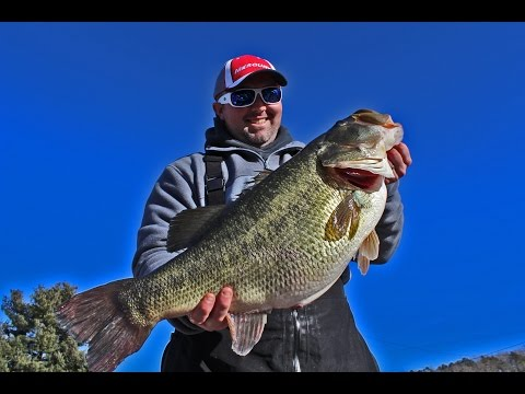 Gabe Keen on Likely Record TN Largemouth