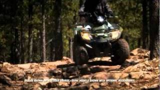 7. 2011 Arctic Cat 300 2x4 show off