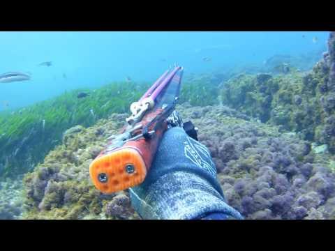 MARM Pesca Submarina en Apnea en Mallorca