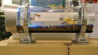 video thumbnail Smart LED mini Aquarium youtube