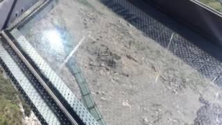 スイス発 Birg駅展望台からの絶景【スイス情報.com】