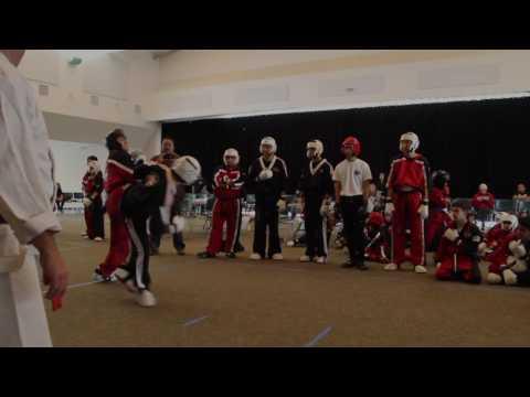 Dojo Wars Trailer