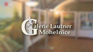 Galerie Lautner připomíná rok své činnosti