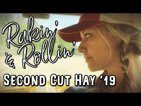 Second-cut hay 2019