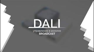 Видеоурок 1. DALI — управление в режиме Broadcast