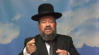 פרשת פינחס – כף זכות