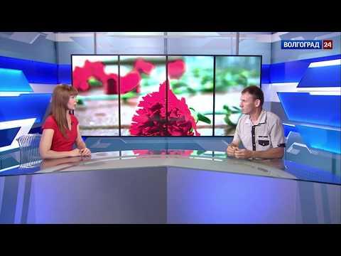 """Андрей Орешкин, руководитель регионального отделения """"Поисковое движение России"""""""