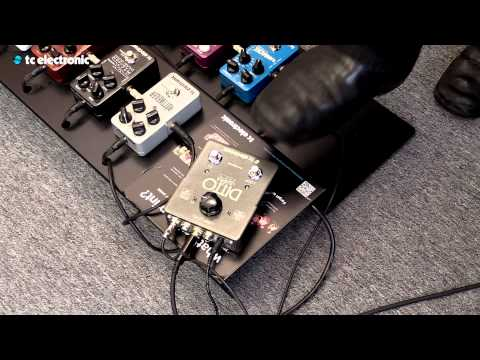 "In this video Peter Hayes from Black Rebel Motorcycle Club creates his ""Nice Try"" Loop for Ditto X2 Looper from TC Electronic.  Ditto X2 Looper product page: http://www.tcelectronic.com/ditto-x2-looper/ StarJam Loops:http://www.tcelectronic.com/starjam-loops/ -Where you can download loops that you can load into the Ditto X2 Looper."