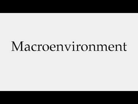 How to Pronounce Macroenvironment