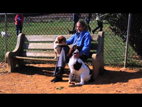 Lehigh Valley Dog Parks