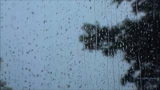 Etno Grupa Sveti Sava - Zasp'o Janko (Lepe Moje Crne Oči) music video