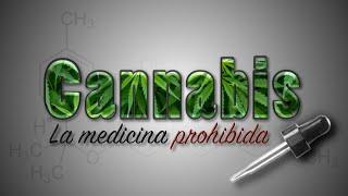 Cannabis - La Medicina Prohibida