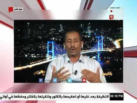 اليمن اليوم 3 7 2017