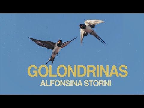 Poemas cortos - Golondrinas  - Alfonsina Storni