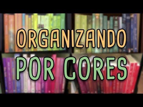 ORGANIZANDO A ESTANTE POR CORES | MINI TOUR PELA ESTANTE