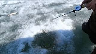 Зимняя рыбалка в Казахстане 14 03 2014