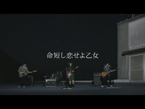 , title : 'MOSHIMO「命短し恋せよ乙女」MV'