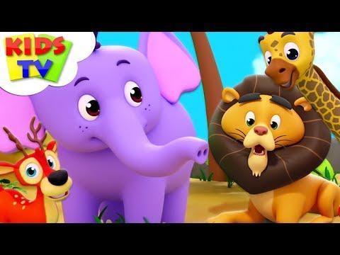 Zoo Song | The Supremes Cartoons | Kindergarten Nursery Rhymes For Toddlers | Kids Videos