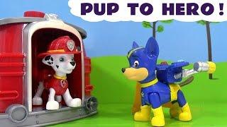 Pup To Hero