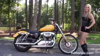 8. Used 2006 Harley Davidson Sportster 1200 Custom Motorcycles for sale