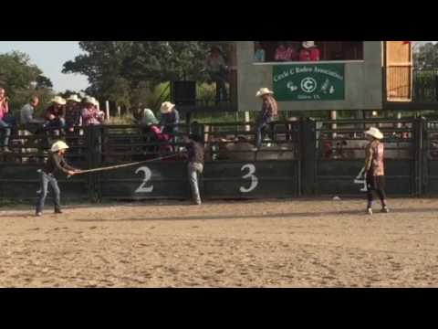 Video Circle c bull riding download in MP3, 3GP, MP4, WEBM, AVI, FLV January 2017