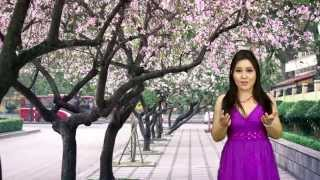 HoaTim Ngay Xua - Bao Ngoc - QH Media 5/14