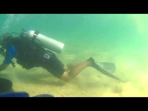 Mergulho em Taipu de fora com amigos