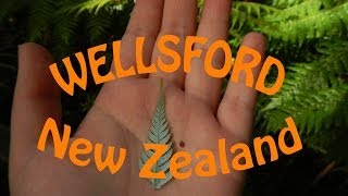Wellsford New Zealand  City new picture : On The Road Again | Wellsford, NZ
