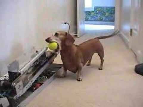 Ball - I built the ball machine because I thought my dog Jerry, might like it and that it would be something fun for me to build. So after two years of on and off w...