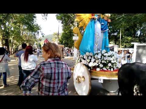 54 festa dos carros de boi em Raposo, maio 2008