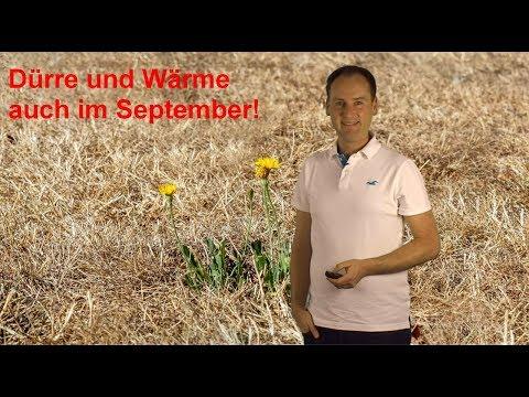Der Jahrhundertsommer 2018 gibt nicht auf: Wärme und Dürre auch im September