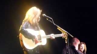 Tommy Shaw and Styx at 2014 Strawberry Festival, Plant City, FL.