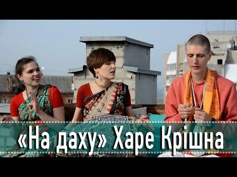 «На даху». «Geekhub». Юрій Курат і Сергій Цибровський