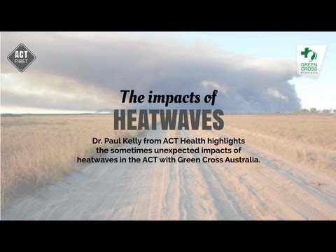 The impact of heatwaves