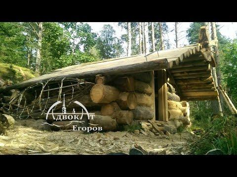 Gość sam zbudował dom z bali przy użyciu prostych narzędzi