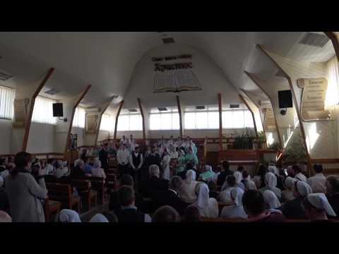 #83 Свадьба Ани и Лэрри. Mennonite wedding in Ukraine 🇺🇦 (видео)