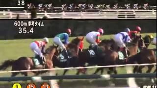 2015年京都牝馬ステークス