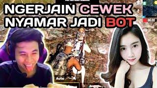 Video PURA-PURA JADI BOT GANGGUIN CEWE BARU MAEN PUBG MOBILE - PUBG MOBILE INDONESIA MP3, 3GP, MP4, WEBM, AVI, FLV Februari 2019