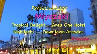 Miyazaki Japan  city photos : Miyazaki, Japan - World's Tallest Palm Trees?