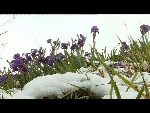 Χιόνισε στη Γαλλία