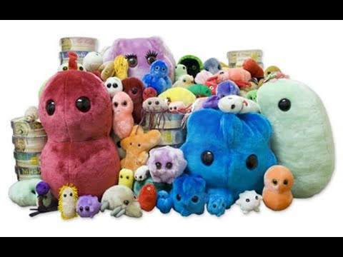 The Stuffed Toys That Represent Microbes