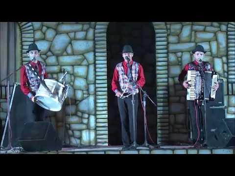 Trio de Forró Os 3 de Campina - Segundo lugar do Arretado Star 2016