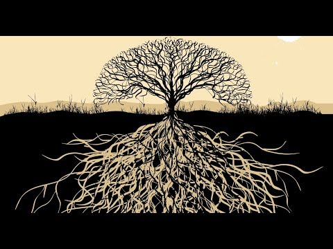 Medicinal Vibes  [Dub / Psydub / Psybient Music Mix] (видео)