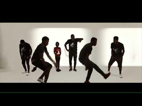 VIDEO: Yaa Pono - Fake mp4
