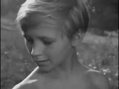 "Ivan's Childhood - (ivanovo Detstvo). ""mama, There's A Cuckoo"" Clip."