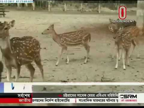 Tourist spots in Sundarban in distress (15-12-2017)