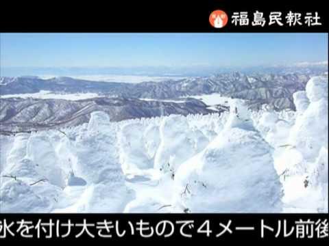 樹氷が見頃に 西大巓で