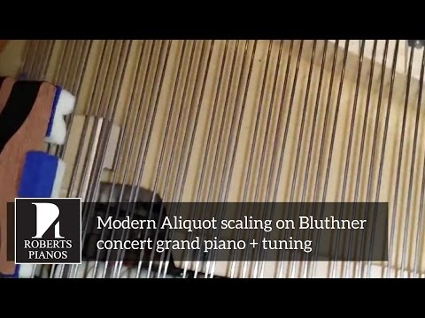 Modern Aliquot Scaling On Bluthner Concert Grand Piano + Tuning