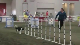 Shawn Cossart - Steeplechase Semi-Finals